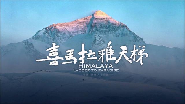 《喜马拉雅的天梯》不是拍给王石和文艺青年们的