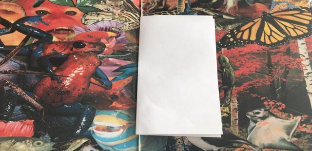 一封藏在黑胶中的信,带来数位专辑所没有的感动